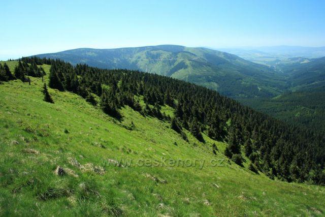 údolí Moravy