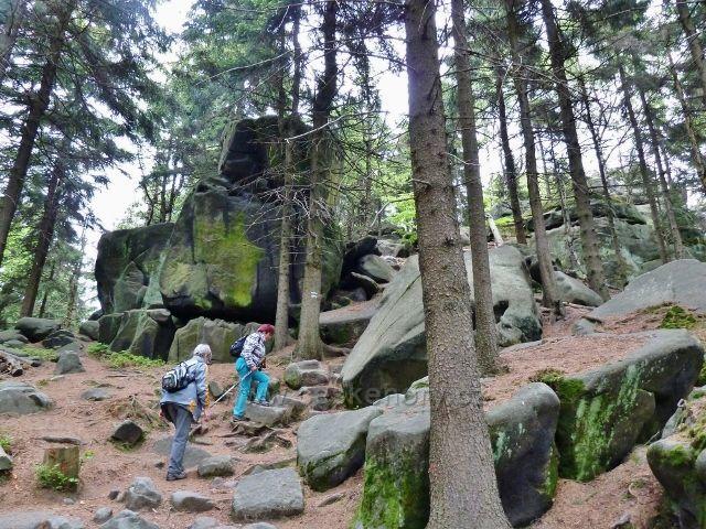 Teplické skály - pod vrcholem Čápu