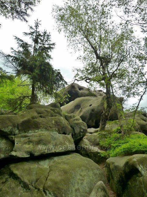 Teplické skály - skalnatý vrchol Čápu