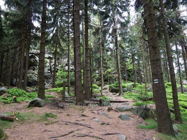 Teplické skály - sestup z vrcholu Čáp po zelené TZ do Teplického údolí