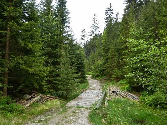Teplické skály - po zelené TZ Teplickým údolím