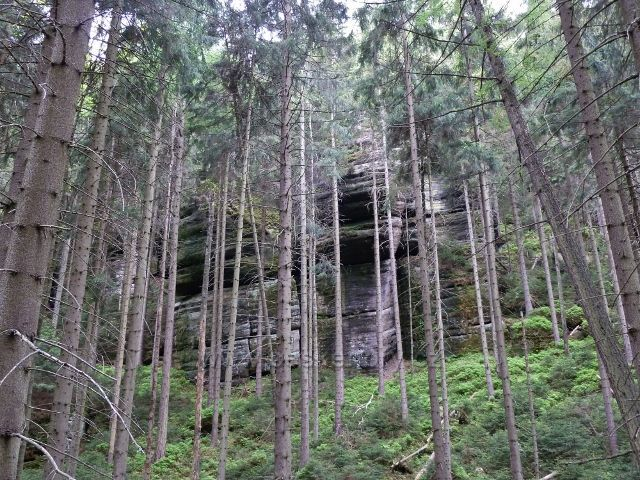 Teplické skály - skalní útvar v dolní části Teplického údolí