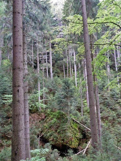 Teplické skály - balvanité dno Teplického údolí
