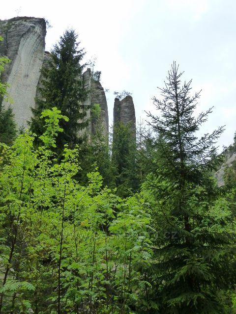 Teplické skály - skalní útvar Strážní věž - Hláska