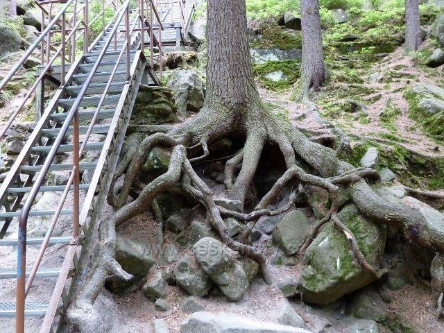 Teplické skály - schodiště ke zbytkům hradu Střmen