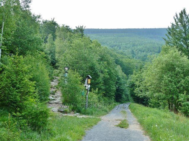 Ramzová - odbočka turistické stezky na Obří skály vede po zelené TZ