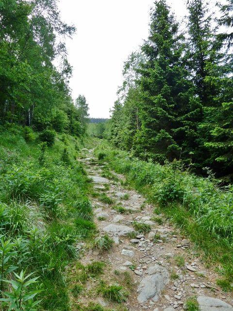 Ramzová - turistická stezka na Obří skály