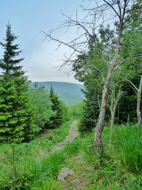 Ramzová - zpětný pohled z turistické stezky na Obří skály k Rychlebským horám