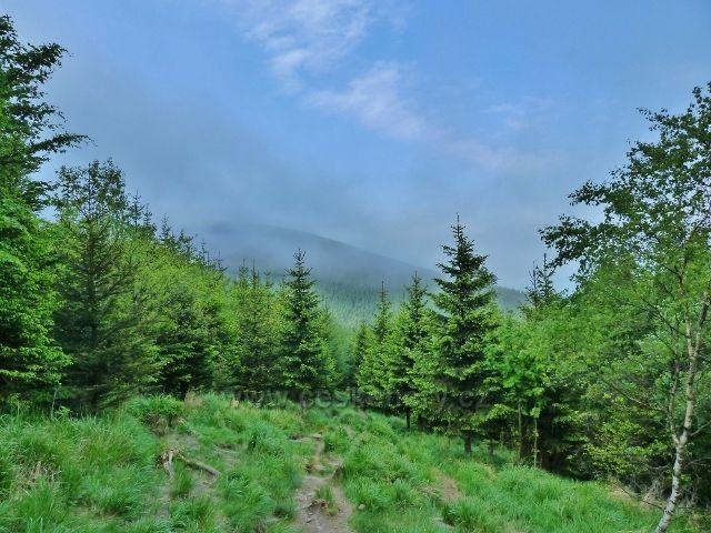 Ramzová - mraky nad stezkou u Obřích skal