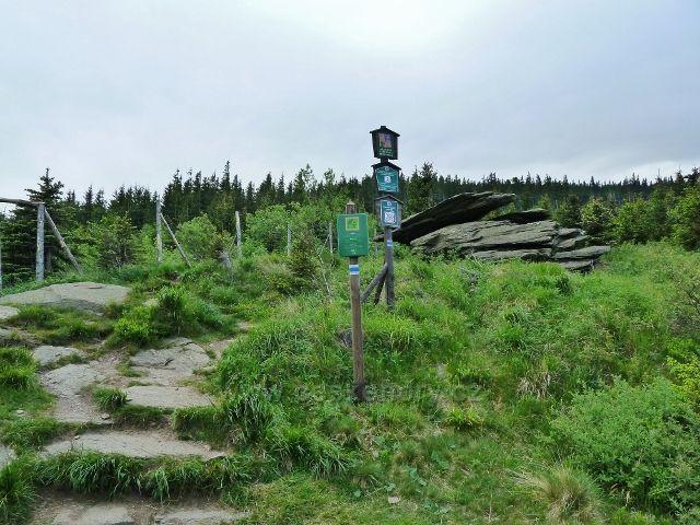 Ramzová - z Obřích skal vede stezka po modré TZ na Šerák