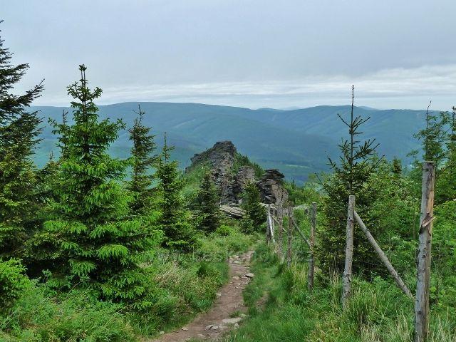 Ramzová - zpětný pohled ze stezky na Šerák k Obřím skalám, na obzoru se rýsují hřbety Rychlebských hor