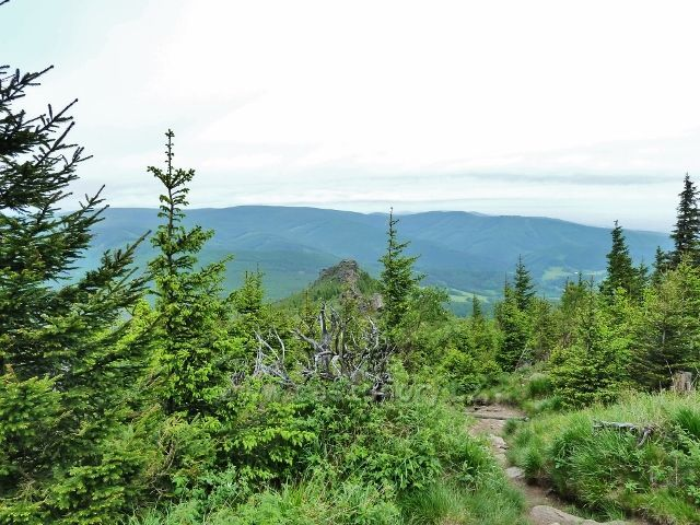 Ramzová - zpětný pohled ze stezky na Šerák k Obřím skalám.Na obzoru je vidět hřebeny Rychlebských hor