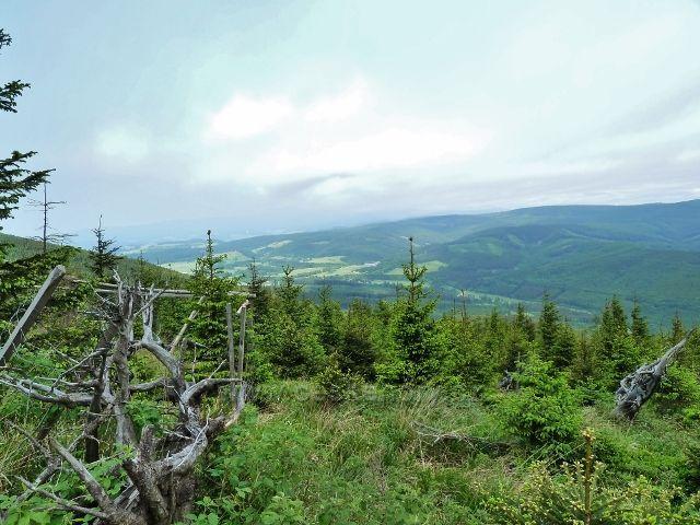Ramzová - pohled ze stezky po modré TZ na Šerák k Ostružné. Nad ní se zvedá pásmo Rychlebských hor