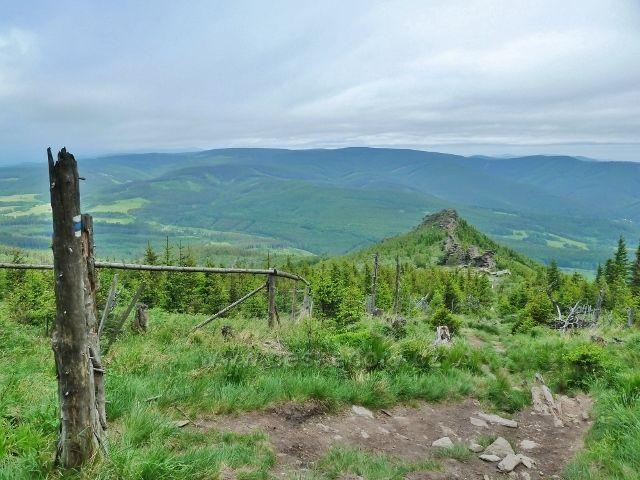Ramzová - ZPĚTNÝ  pohled ze stezky na Šerák k Obřím skalám a zvedající se pásmo Rychlebských hor