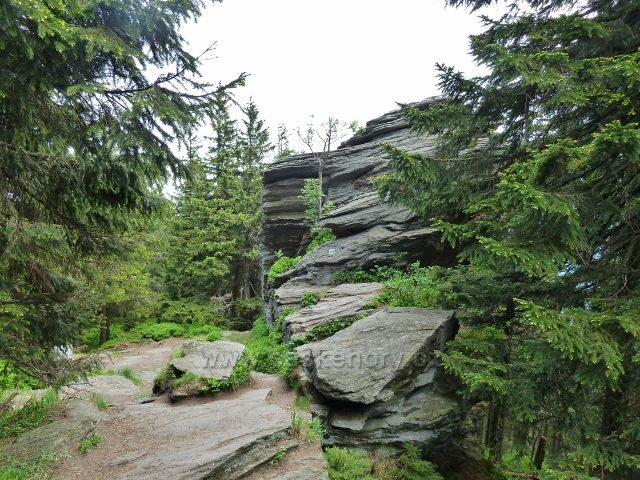 Ramzová - stezka po modré TZ z Obřích skal na Šerák vede kolem skalního výhozu