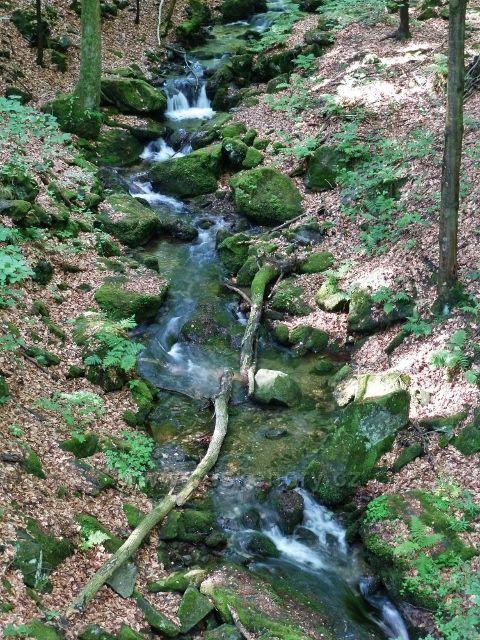 Nýznerovské vodopády - Bučínský potok