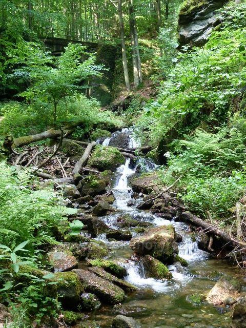 Nýznerovské vodopády - Bučínský potok na soutoku s potokem Stříbrným