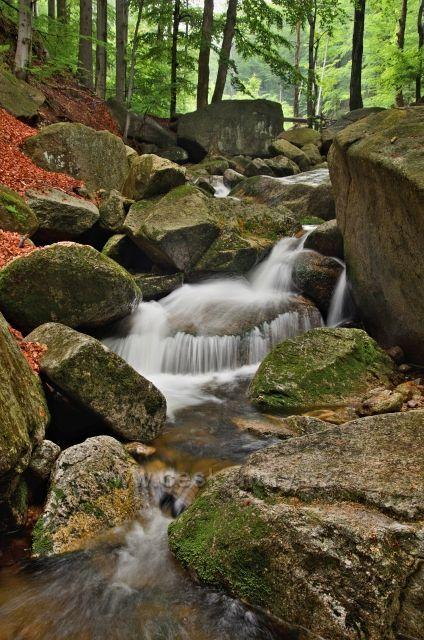 Malý vodopádek na Hájeném potoce.