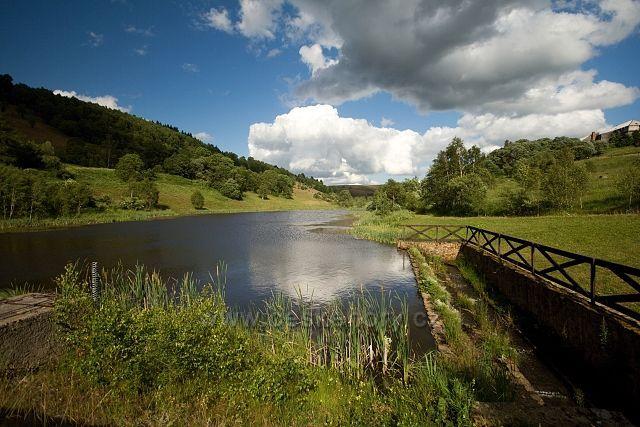 Rybník na Moldavě