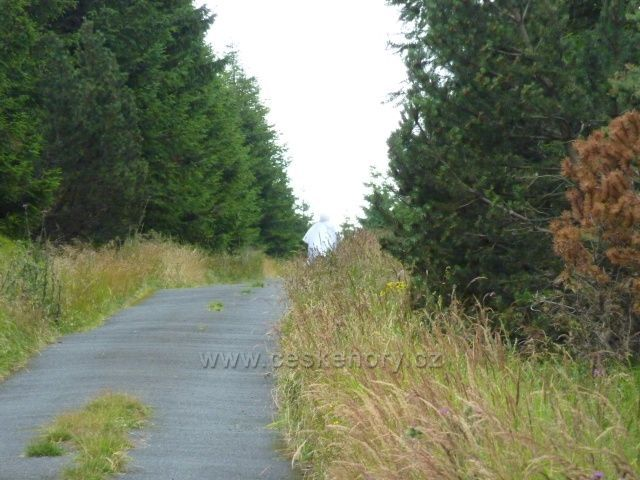 Bílá paní spatřena na lesní cestě poblíž Meluzíny