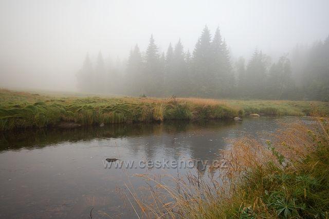 Mlha u Roklanského potoka