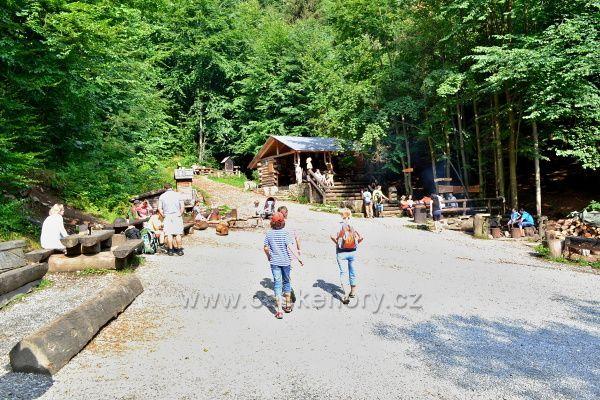 Lesní bar v Horní Lipové