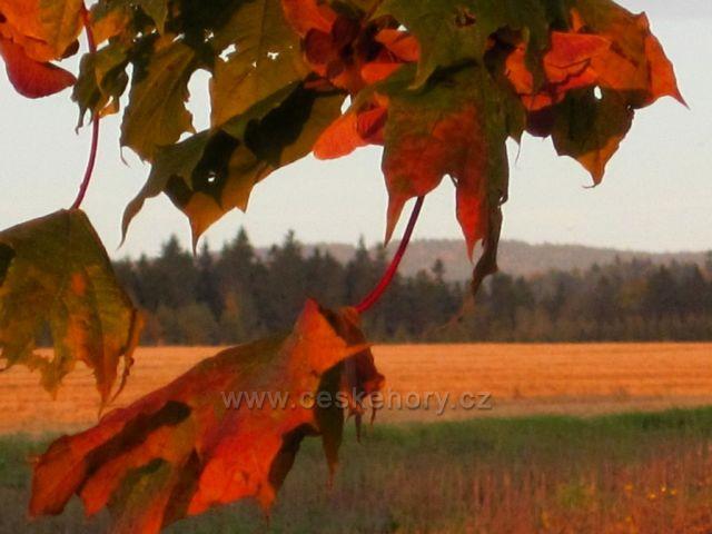 podzim pod horami