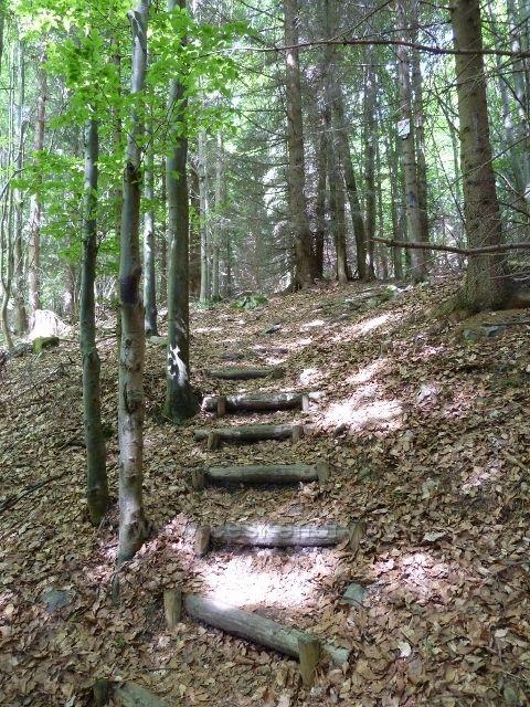 Lázně Jeseník - cesta po úbočí Studničního vrchu od Bezručova k Rumunskému pramenu