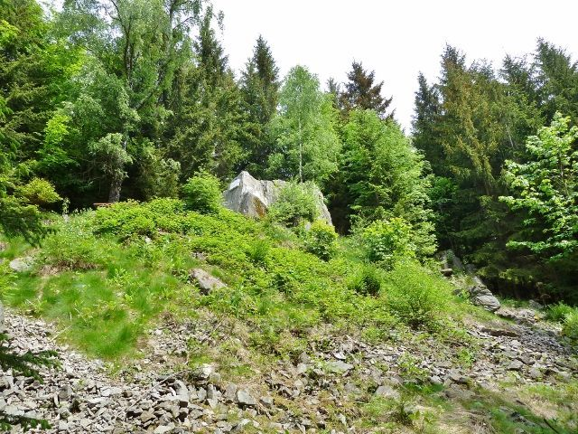 Lázně Jeseník - úbočí Hydropatických skal