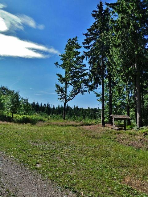 Buková hora - odpočívadlo u neznačené cesty z Náměstíčka