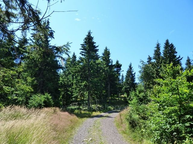 Buková hora - cesta z vrcholu do sedla Bukové hory