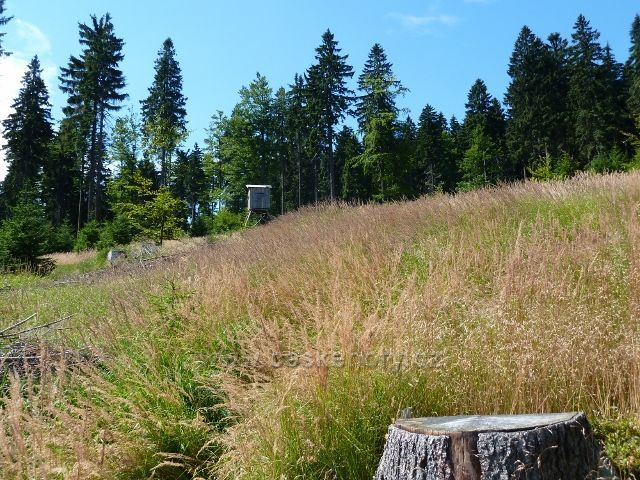 Buková hora - posed poblíž sestupové stezky po žluté TZ do Mlýnického Dvora