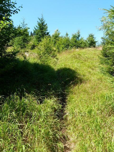 Buková hora - sestupová stezka po žluté TZ do Mlýnického dvora