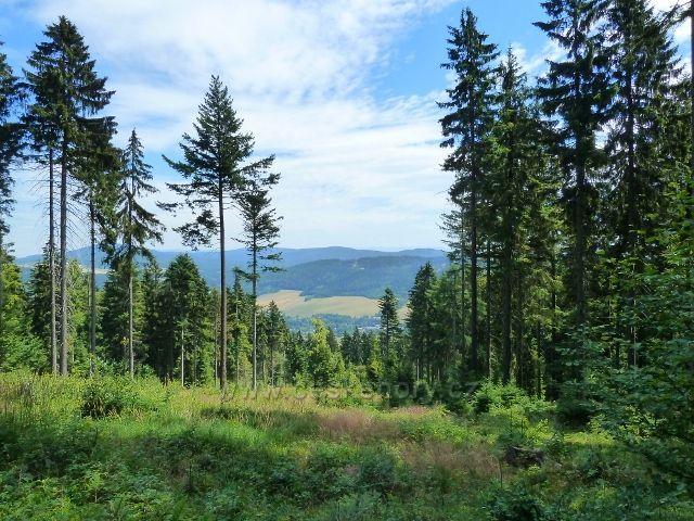 Buková hora - sestupová stezka po žluté TZ do Mlýnického Dvora - průhled k Moravskému Karlovu