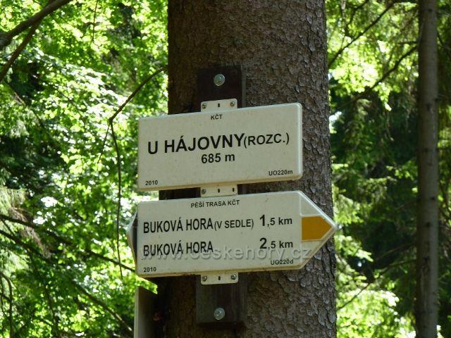"""Buková hora - turistický rozcestník žluté a modré TZ  """"U Hájovny"""""""