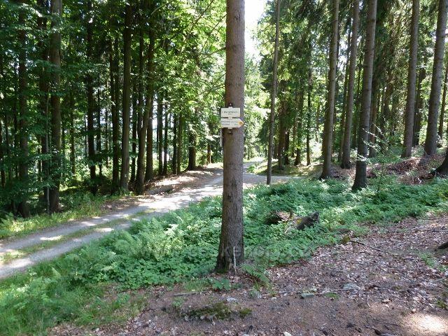 Buková hora - rozcestí U Hájovny