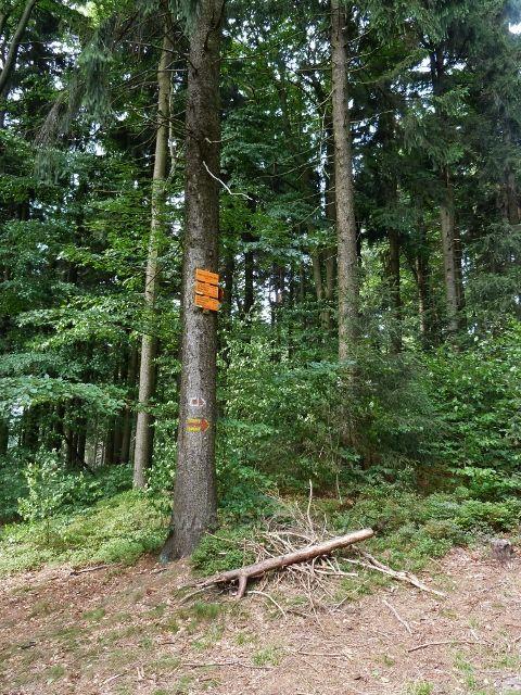 Buková hora - rozcestí nad Valteřicemi