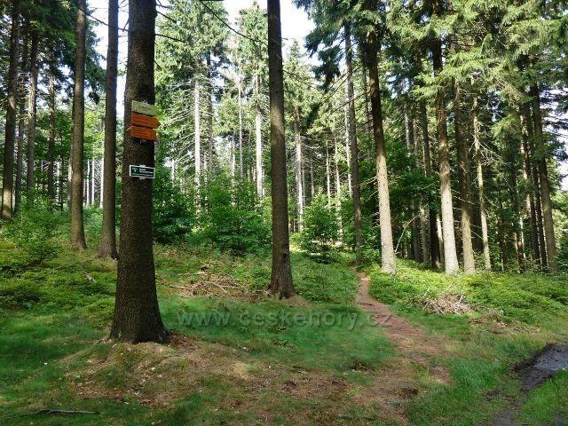 Buková hora - rozcestí Strážka pod stejnojmenným vrchem
