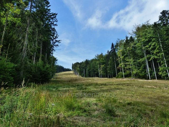 Bukové hora - pohled na sjezdovku k Mlýnickému Dvoru