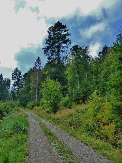 Buková hora - cyklostezka 4071 nad Mlýnickým Dvorem