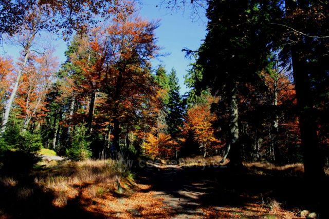 Podzimní proměny