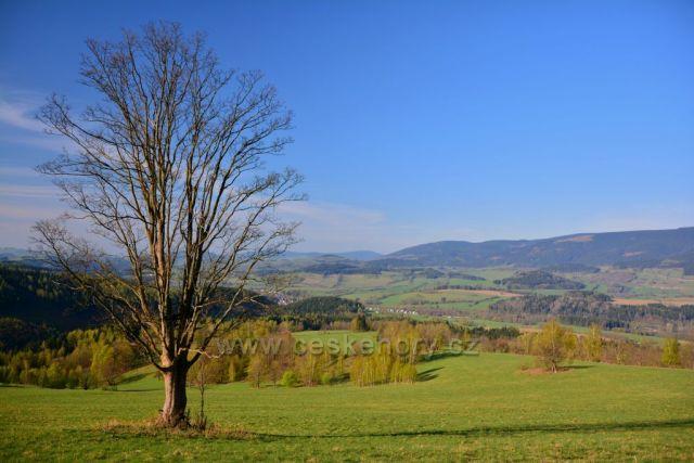 Starý kopec