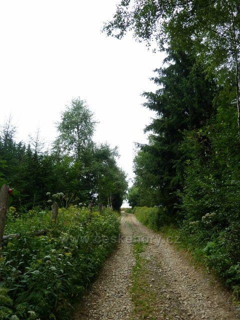 Ostružná - cesta pod vrchol Stráž po červené TZ