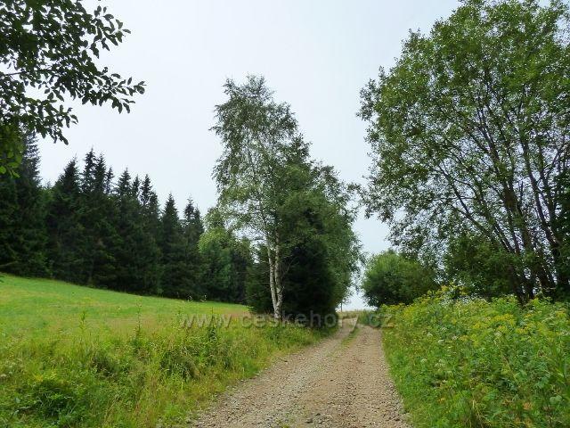 Ostružná - cesta po červené TZ pod vrchol Stráž