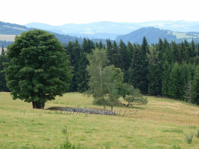 "Ostružná - cesta po červené TZ vede nad horskými pastvinami s ""kamennými hřbety"" nad Bídou"