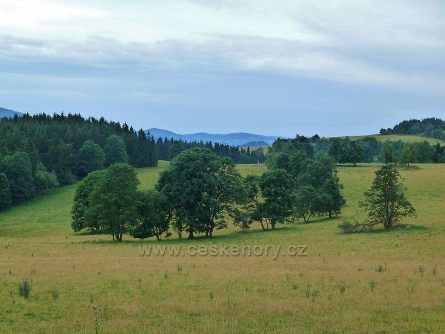Ostružná - vyprahlé horské pastviny nad Bídou