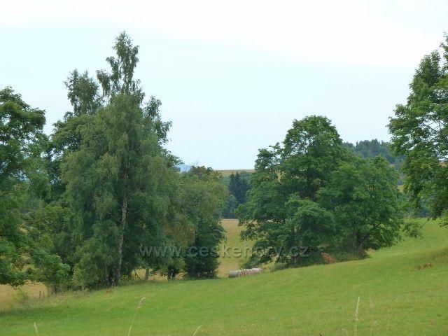 Ostružná - pastviny nad bývalou Bídou