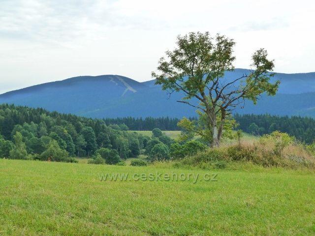 Ostružná - pohled z Holého vrchu na Šerák