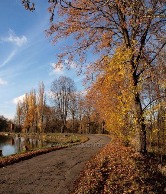 Listopad u Havlovických rybníků
