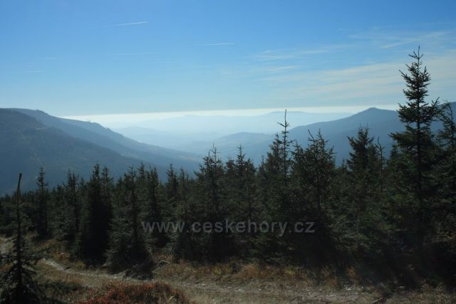 výhled od Sněžné chaty do údolí Dolní Moravy